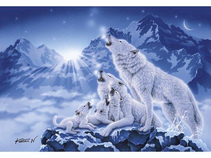 Rodina polárních vlků