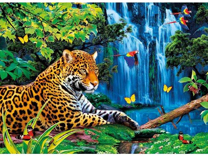Jaguár v džungli - 3D efekt + brýle