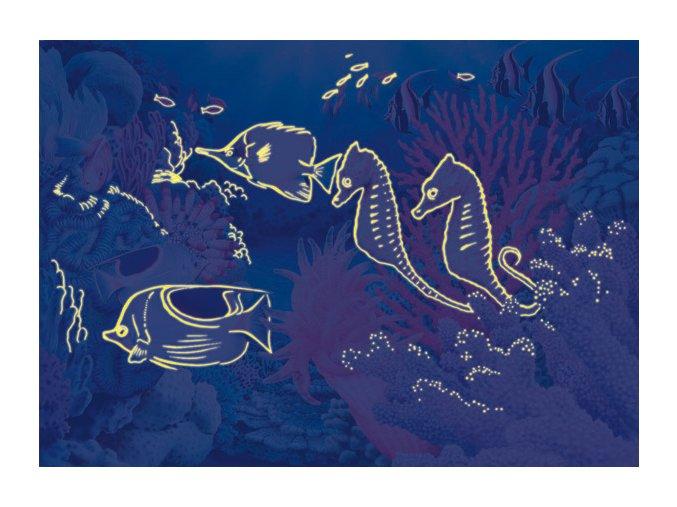 Život pod mořem - neon - svítí ve tmě