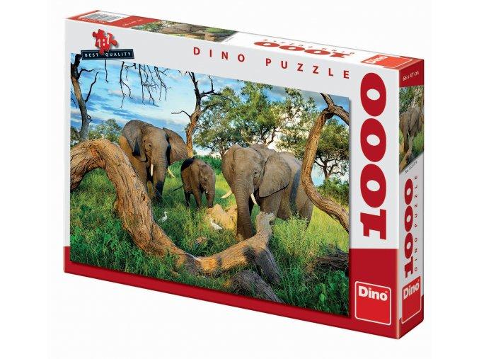Sloni z Botswany