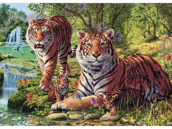 Secret collection: Tygři - najdi 12 skrytých detailů