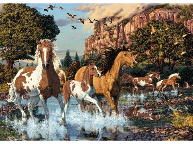 Secret collection: Koně - najdi 15 skrytých detailů