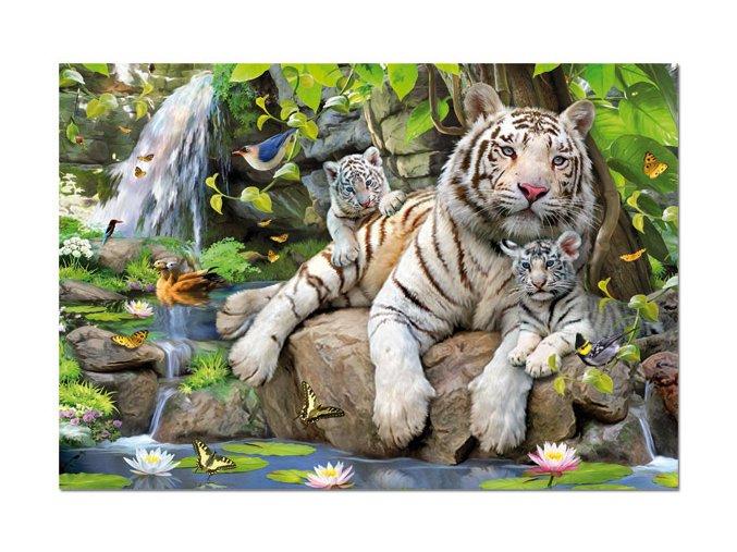 Bílí Bengálští tygři