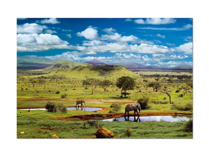 Národní park Tsavo, Kenya