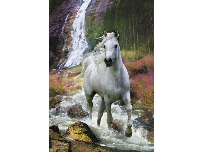 Svoboda - Bělouš u vodopádu