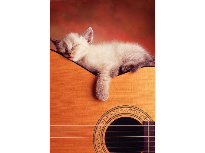Moje kytara