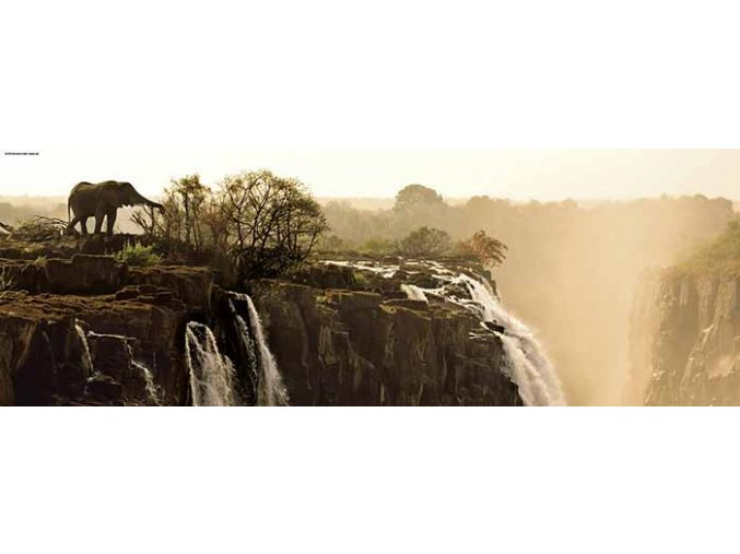 Alexander von Humboldt: Slon u vodopádu - panorama
