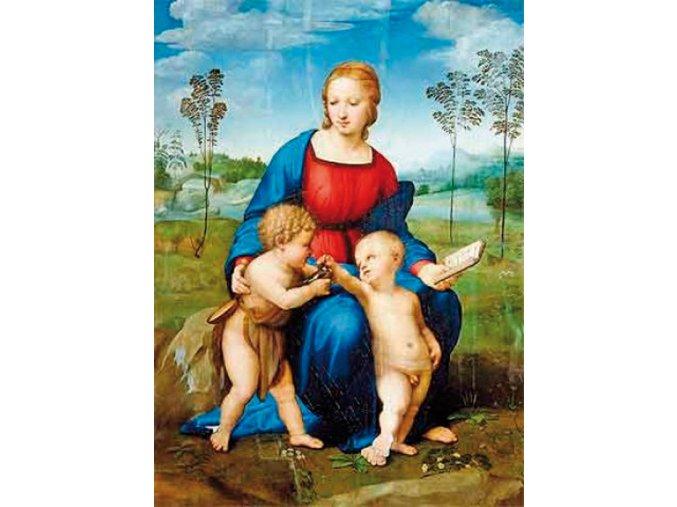 Raffaello: Madonna se stehlíkem