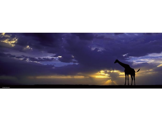 Alexander von Humboldt: Západ Slunce (Sunset) - panorama