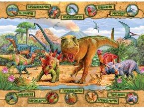 Dinosauři s popisky XXL