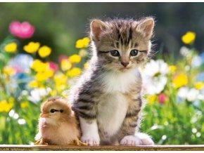 Roztomilí kamarádi (Cute Friends)
