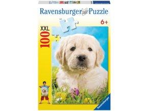 Vzácné štěně (Precious Puppy) XXL