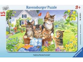 Sladké kočičky - deskové v rámečku