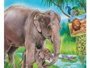 Sloni a lvi - 2 x 20 dílků