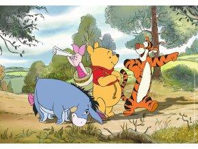 Walt Disney: Medvídek Pú na procházce - 2 x 20 dílků