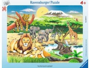 Africká zvířata - deskové v rámečku