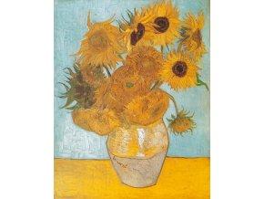Van Gogh: Slunečnice