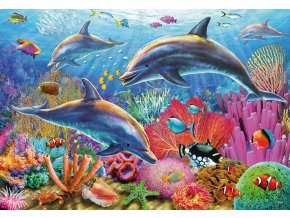 Podmořská krása - 2 x 24 dílky