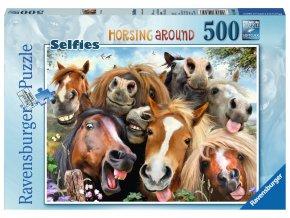 Smějící se koně - selfie (Horsing around)