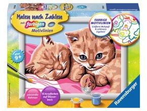 Malování - kočičky - v němčině