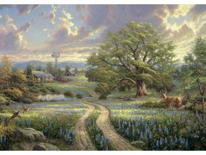 Thomas Kinkade: Venkovský život (Country Living)