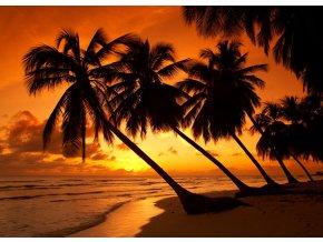 Tropické červánky