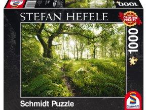 Stefan Hefele: Pěšina