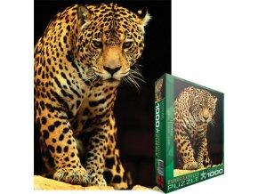 Leopard - poškozená krabice