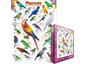 Papoušci (Parrots)