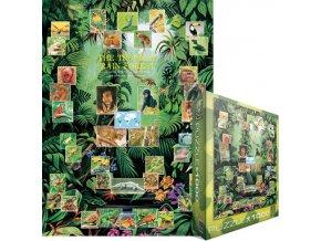 Tropický deštný prales (The Tropical Rain Forest)