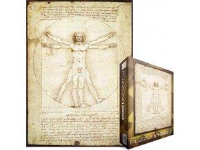 Leonardo da Vinci: Vitruvian Man - 1490