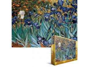 Vincent Van Gogh: Kosatce (Irises)