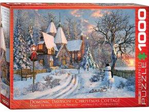 Dominic Davison: Vánoční dům