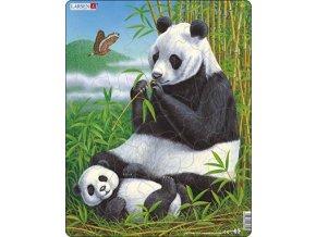 Panda s mládětem - deskové