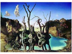 Dalí: Labutě odrážející slony