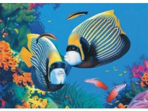 Život pod mořem