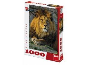Zamyšlený lev