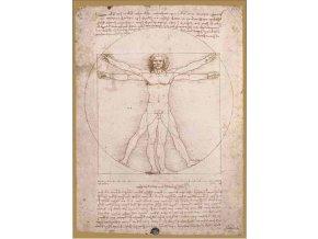 Leonardo da Vinci: Schema Delle Proporzioni - Art Stones