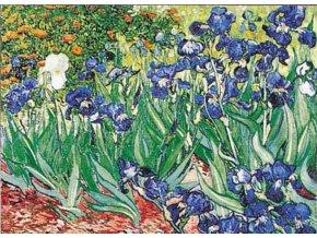Van Gogh: Kosatce - (Iris)
