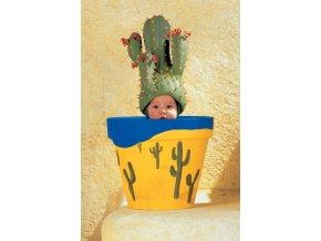 Miniatura: Anne Geddes: Květináč - kaktus