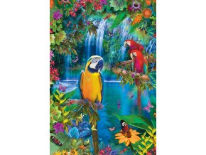 Země tropických papoušků