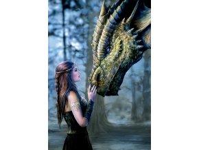 Bylo nebylo - Dívka a drak