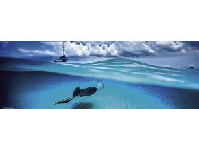 Alexander von Humboldt: Rejnok (Stingray) - panorama