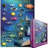 Korálový útes (The Coral Reef)