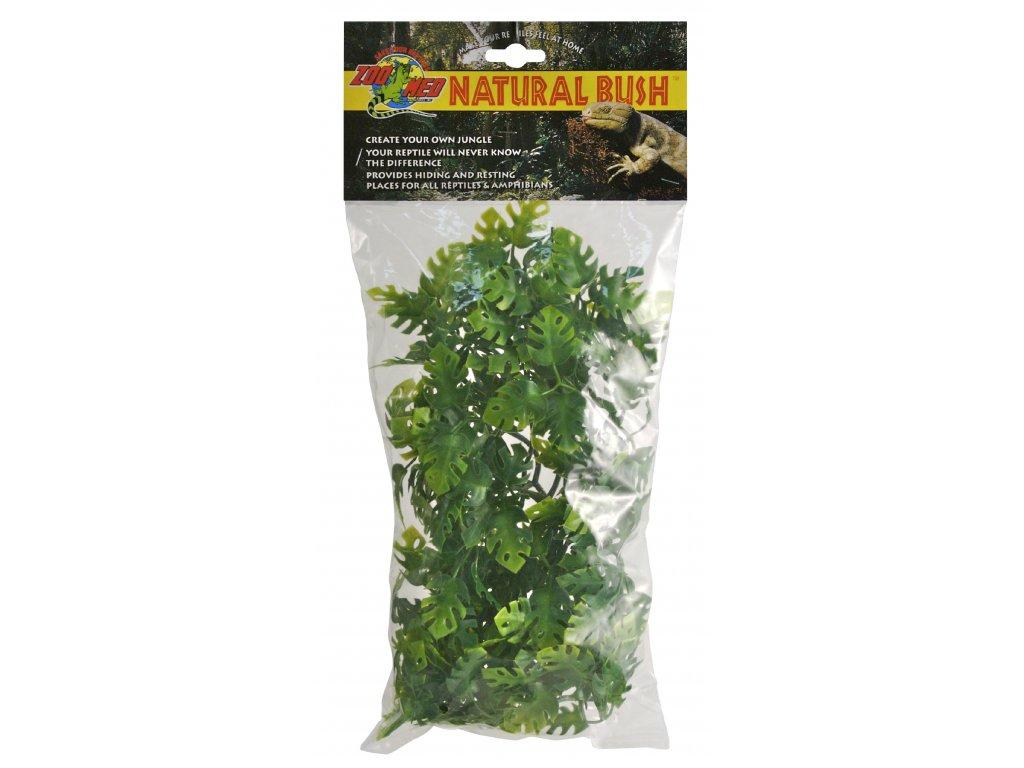 Terarijní rostlina ZMD Amazonian Phyllo M