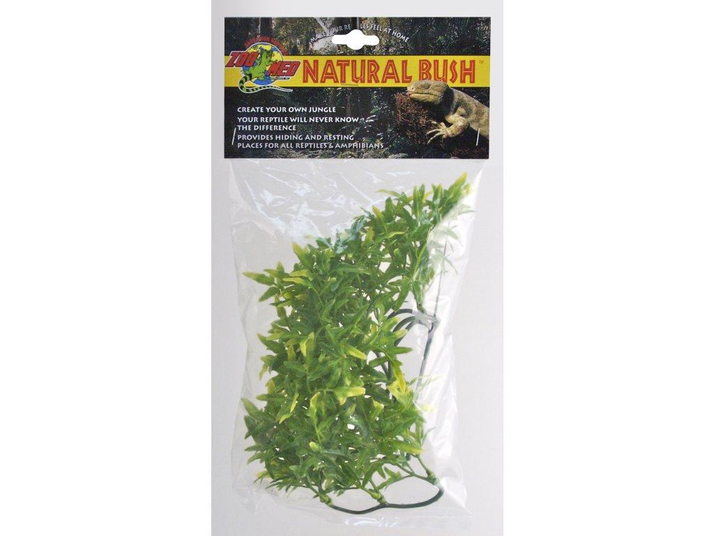 Terarijní rostlina ZMD Bolivian Croton S