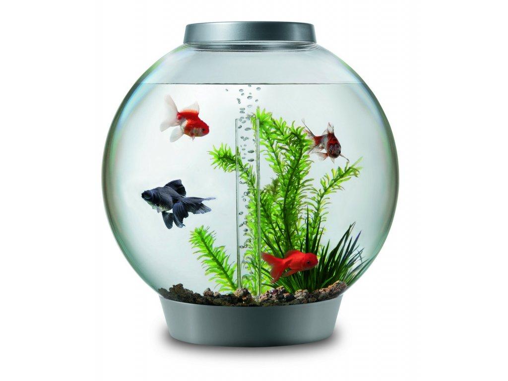 Biorb akvarijní set stríbrný 30l