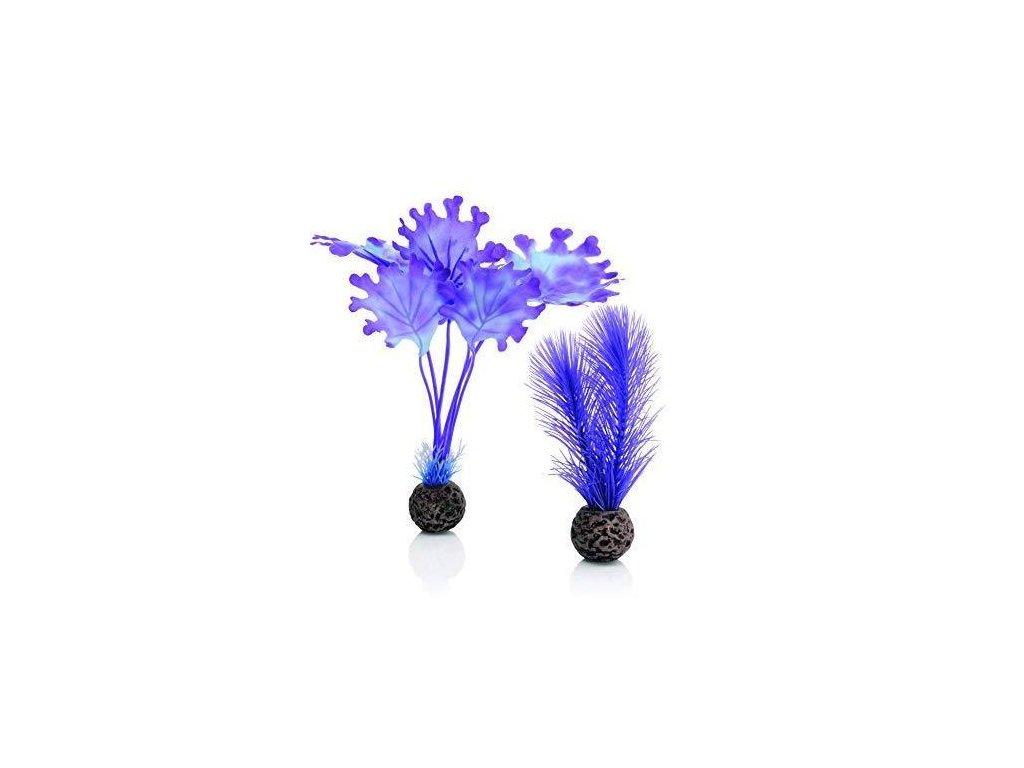 Biorb akvarijní dekorace chaluha purpurová malá 2 ks
