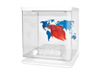 CATGATO Betarium Betta kit world map 2l