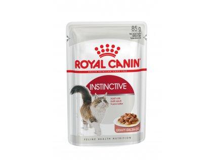 Royal Canin Intense Beauty gravy ve šťávě 12x85g